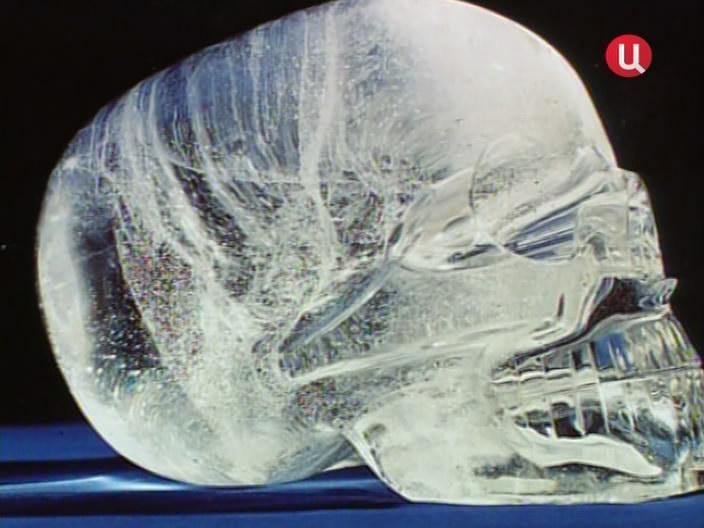 череп макс
