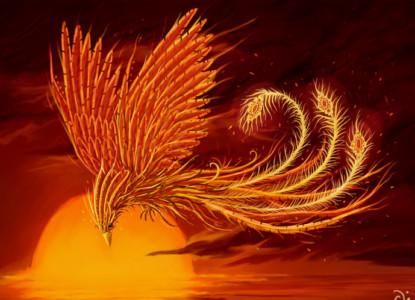 sweezar_2005_konkurs_zhar-ptica