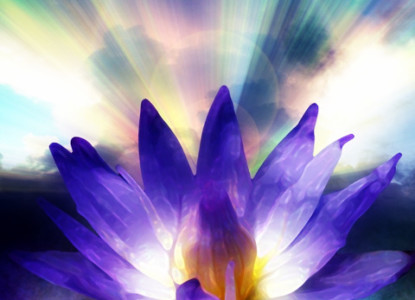 lotus-being