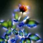 Излучать энергии любви, радости, творчества, свободы.