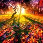 ЭНЕРГО-ПРОГНОЗ НА НЕДЕЛЮ 20-26 октября и Астропрогноз на 20.10.2013