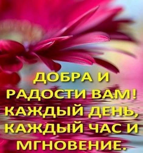 1526477_411214792344182_800483837_n