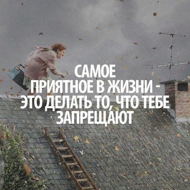 1601246_346949938781035_388656006_n