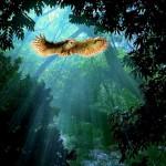 Для тех, у кого есть сила духа. Как расстаться с хронической усталостью?