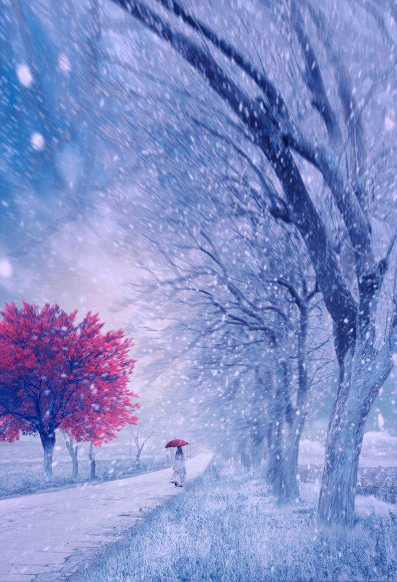 Год Козы по Китайскому календарю начнется в ночь с 18 на 19 февраля.