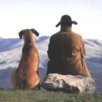 Найдено объяснение любви между собаками и людьми