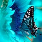 Цветок жизни - через Моник Матье