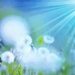 Светлана Ория. Эволюция Сознания: от фанатизма к вере, свободе и просветлению