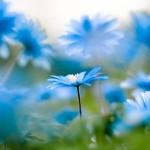 12 преимуществ минимализма как образа жизни
