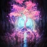 Прожектор души. Ваши двенадцать лучей колеса Создателя - Послание Архангела Михаила через Ронну Герман