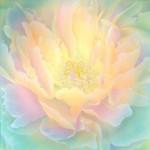 О «Могущественном Я ЕСМЬ Присутствии». 10 дыр, через которые утекает ваша сила
