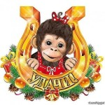 Год Огненной обезьяны — год больших перемен. С НАСТУПАЮЩИМ 2016!