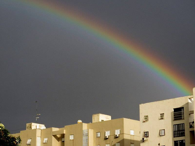 Rainbowmalamant2