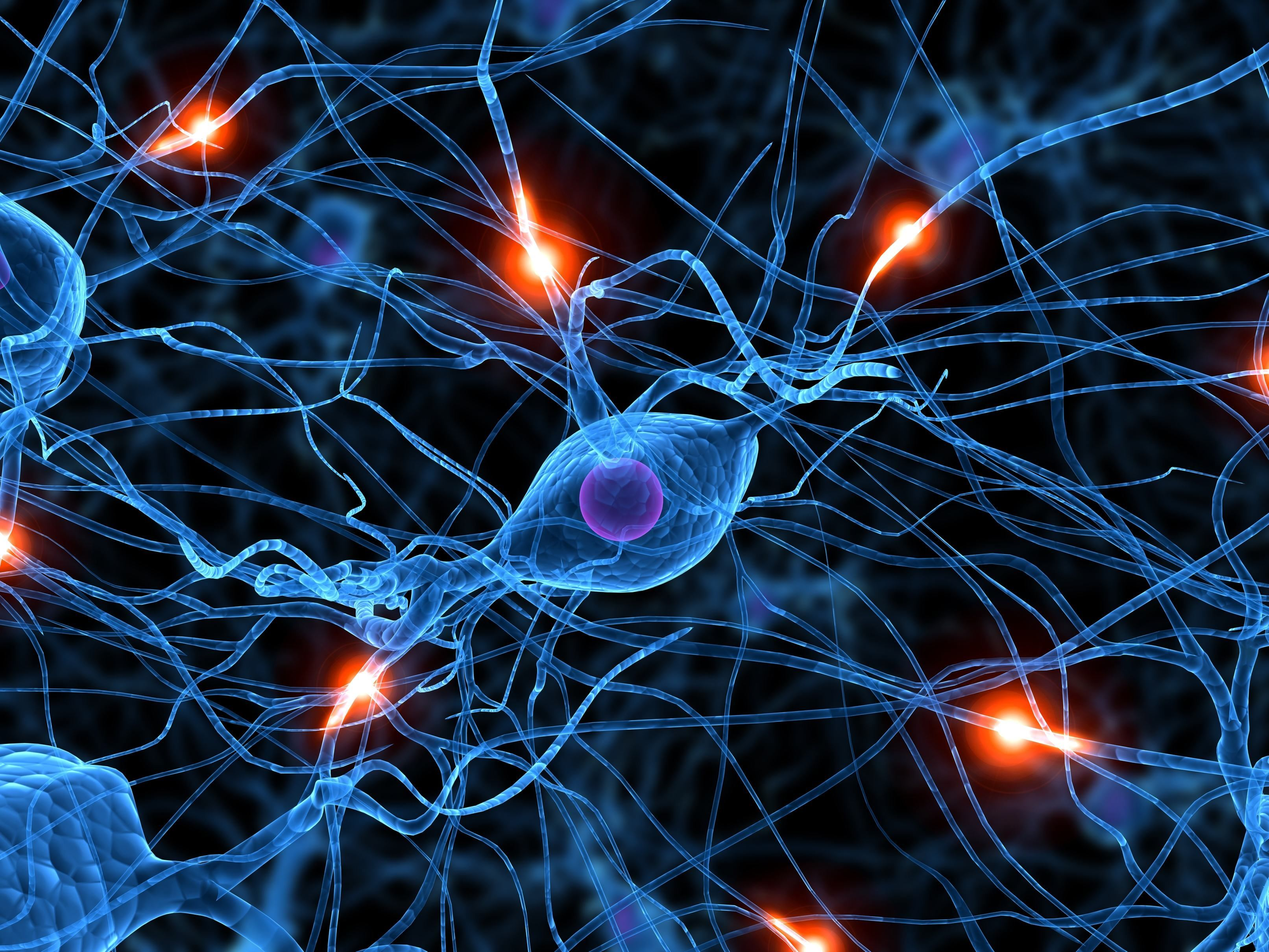 aktive nervenzelle