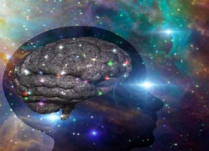 brain_universe_qwqwqw