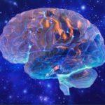 Нейронаука и осознанность: как осчастливить свой мозг