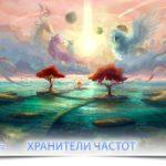 Стив Ротер. ИСЦЕЛИТЕ ЭМОЦИИ, ЧТОБЫ НЕСТИ СВЕТ