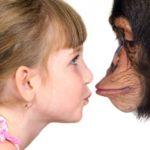 Различие сознаний человека и обезьяны