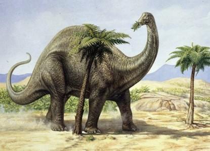 dinosaur_640_0
