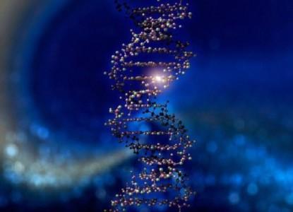 molekuly-dnk1