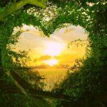 Светлана Ория. Жалость, сочувствие, сострадание, милосердие — в чём разница?