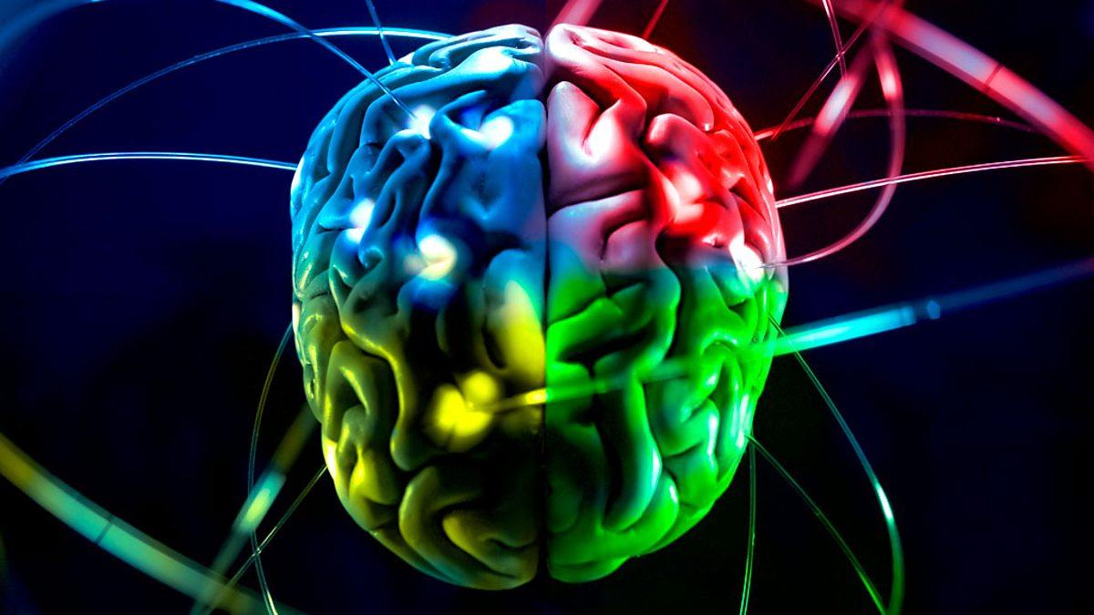 ЧТО любит и что НЕ любит наш мозг