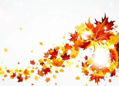 Nature___Seasons___Autumn_the_autumn_leaves_are_flying_046211_