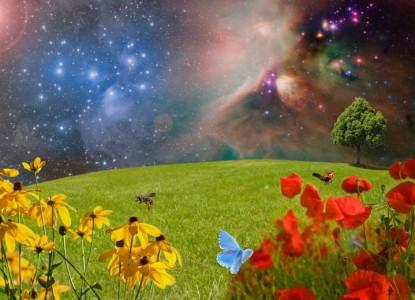 meadow-2401911_1280