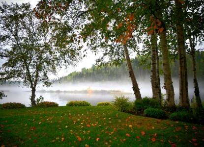 landscape-4497191_1280