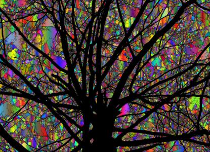 tree-4655660_1280