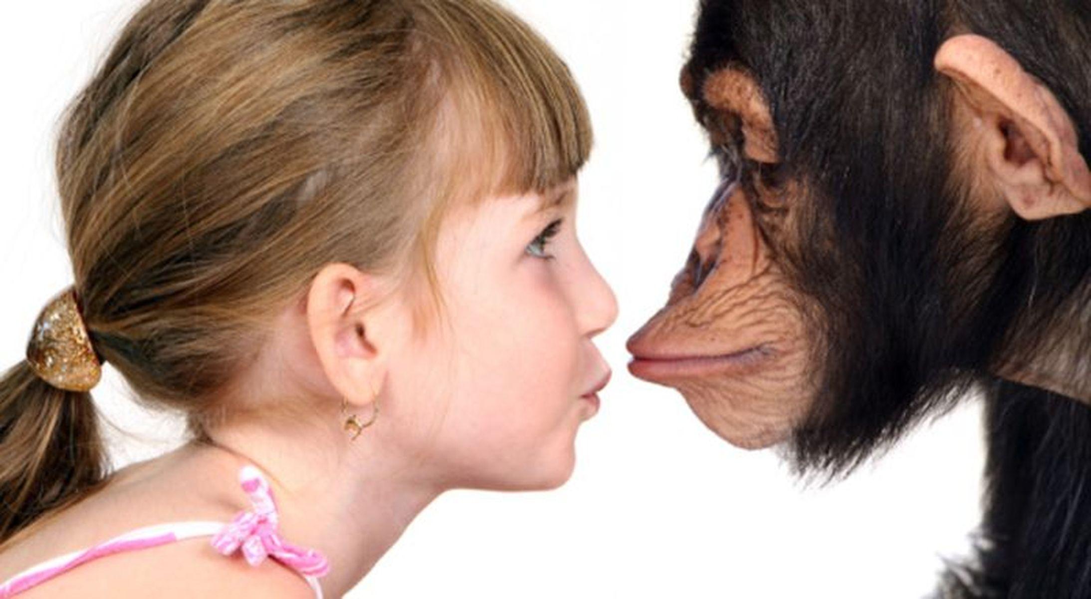 человек и обезьяна фото для